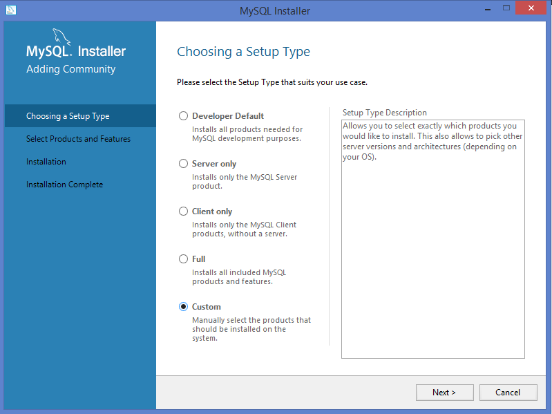 MySQL setup type for windows